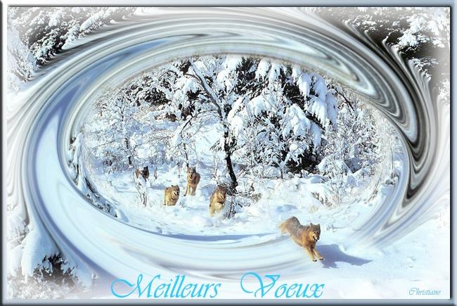 Meilleur Voeux 2012 - miroir design - miroir décoratif